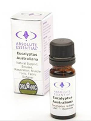 Absolute Essential Organic Eucalyptus Australiana, 10ml